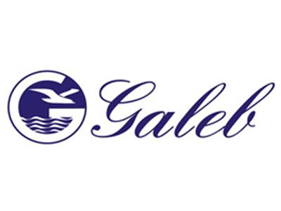 galeb_logo
